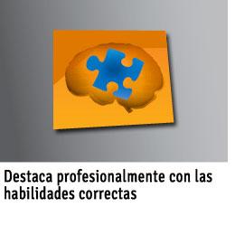 Destaca-profesionalmente-con-las-habilidades-correctas-ICON
