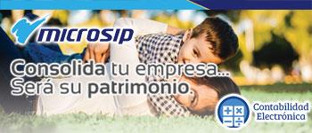 Microsip-Revista