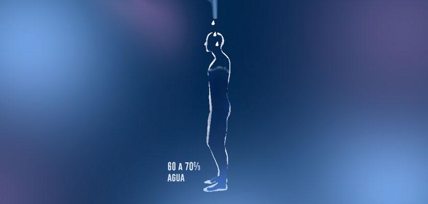 A todos nos han dicho alguna vez que debemos tomar mínimo 8 vasos de agua  al día 5283ae0f0a7