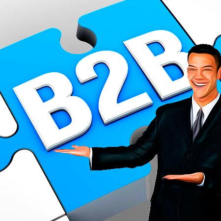 Bases de datos B2B